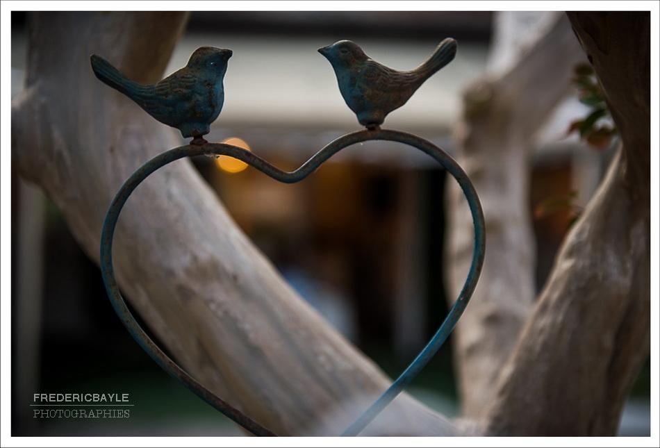 reportage-mariage-orangerie-16