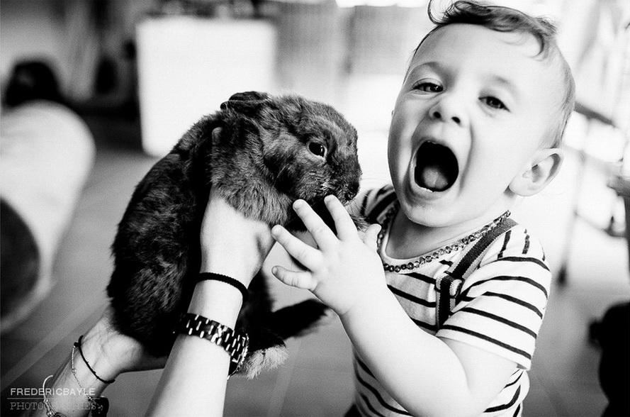 petit garçon jouant avec un lapin