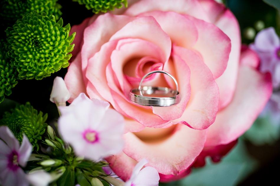 les alliances au milieu d'une fleur de Provence
