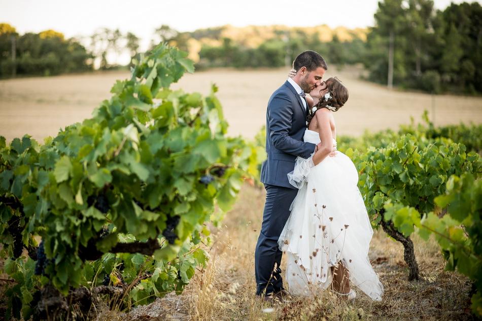 dans les vignes de la Tour Vaucros en Provence